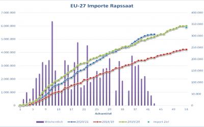 Rapspreis für alte Ernte steigt am vorletzten Handelstag kräftig an