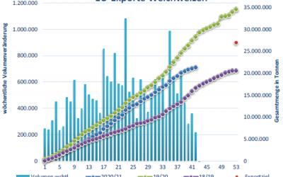 EU-Weizenexporte unter Vorjahreswerten