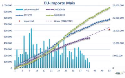 Maispreise steigen an der MATIF und CBoT