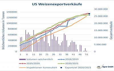 Wohin geht der US-Weizenpreis nach dem Einbruch?
