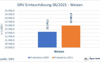 DRV erhöht Prognose für deutsche Weizen- und Rapsernte 2021