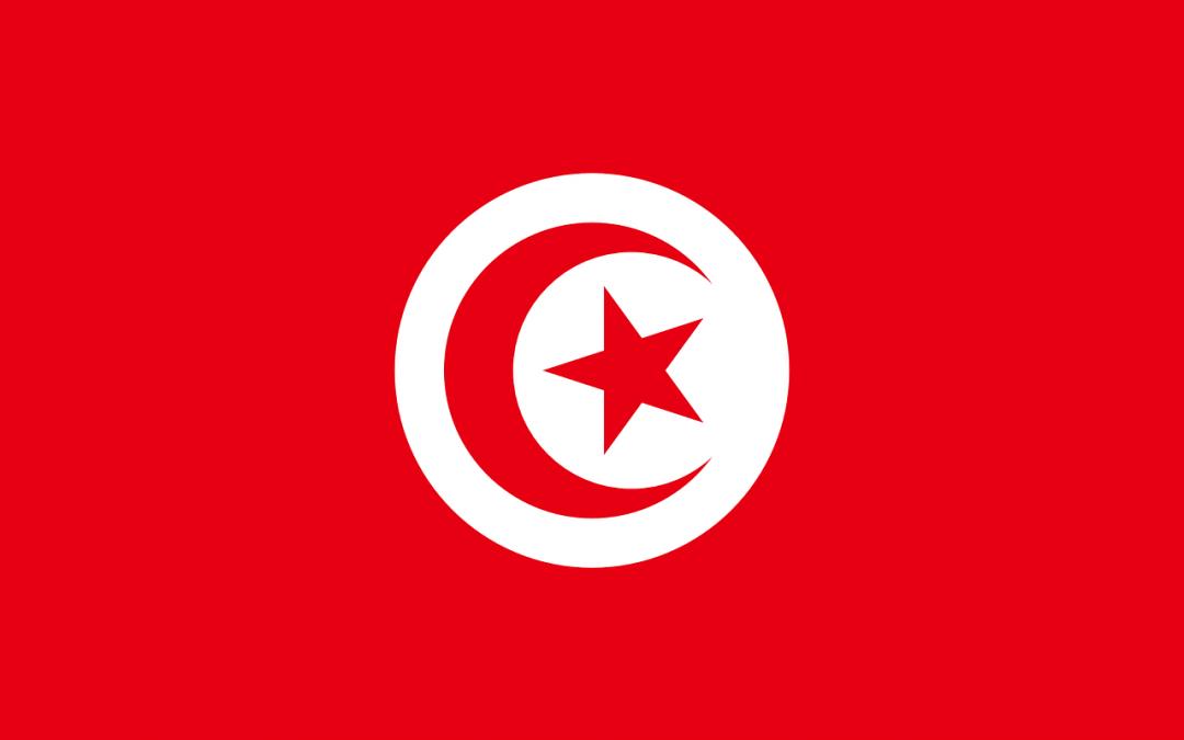 Tunesien erhält Angebote für Tender