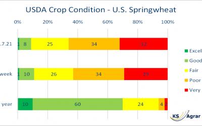 Crop Condition Report verschlechtert sich weiter für US-Sommerweizen