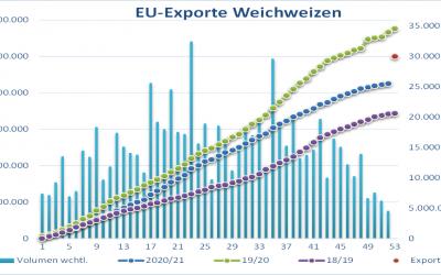 Bauernverband zuversichtlich für Weizenernte in Deutschland